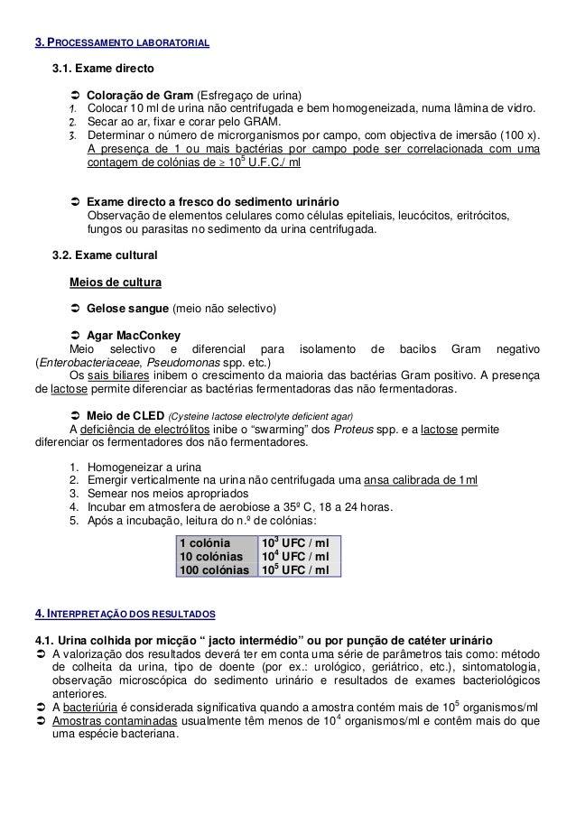 infecções do trato urinário8341 Bacterias No Exame De Urina #6