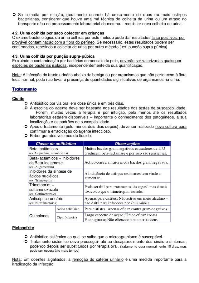 infecções do trato urinário8341 Bacterias No Exame De Urina #7