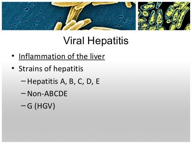 Best Food For Hepatitis B Carrier