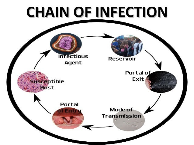 the chain of infection Certain conditions must be met in order for a microbe or infectious disease to be spread from person to person this process, called the chain of infection, can only.