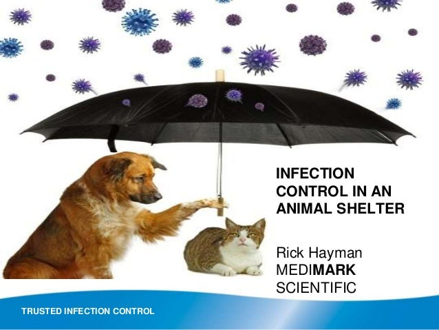 TRUSTED INFECTION CONTROL INFECTION CONTROL IN AN ANIMAL SHELTER Rick Hayman MEDIMARK SCIENTIFIC