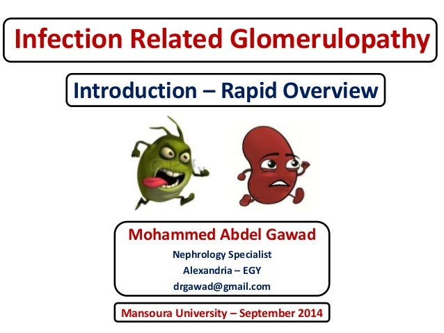 Infection Related Glomerulopathy  Introduction – Rapid Overview  Mohammed Abdel Gawad  Nephrology Specialist  Alexandria –...