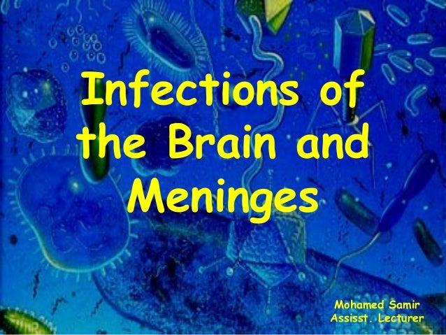 Infections of the Brain and Meninges Mohamed Samir Assisst. Lecturer