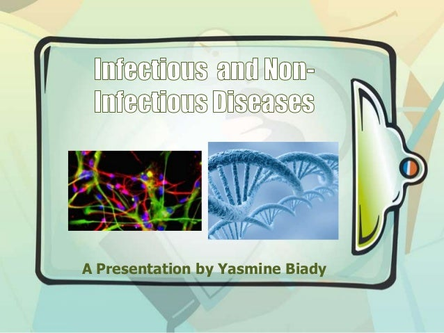 A Presentation by Yasmine Biady