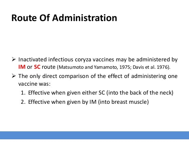 Route Of Administration  Inactivated infectious coryza vaccines may be administered by IM or SC route (Matsumoto and Yama...