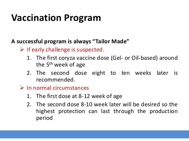 """Vaccination Program A successful program is always """"Tailor Made""""  If early challenge is suspected. 1. The first coryza va..."""