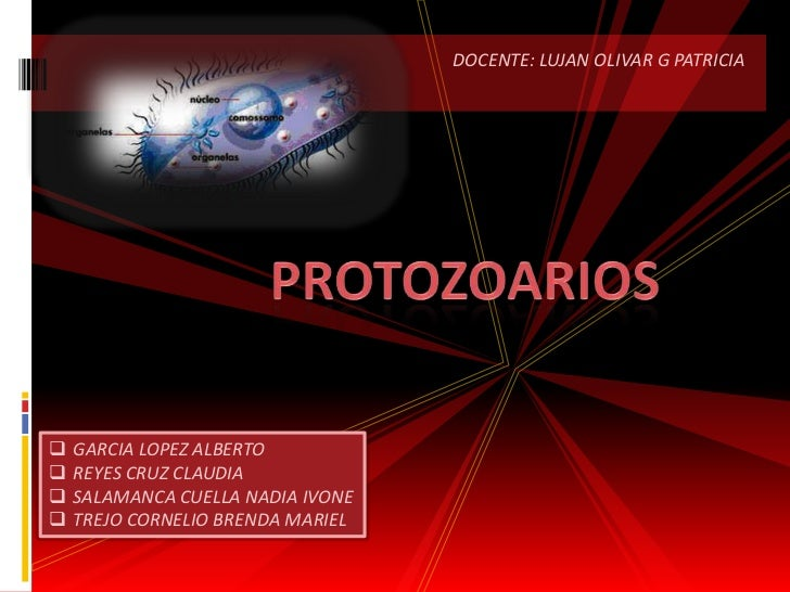 DOCENTE: LUJAN OLIVAR G PATRICIA <br />protozoarios<br /><ul><li>GARCIA LOPEZ ALBERTO