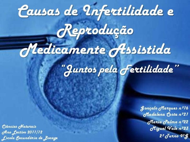 """Causas de Infertilidade e             Reprodução       Medicamente Assistida                              """"Juntos pela Fer..."""