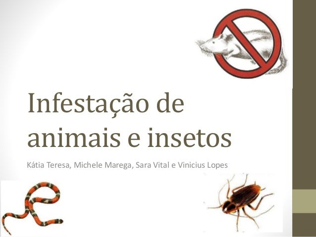 Infestação de animais e insetos Kátia Teresa, Michele Marega, Sara Vital e Vinicius Lopes