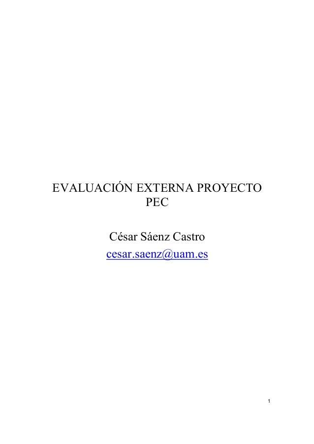 EVALUACIÓN EXTERNA PROYECTO PEC César Sáenz Castro cesar.saenz@uam.es  1