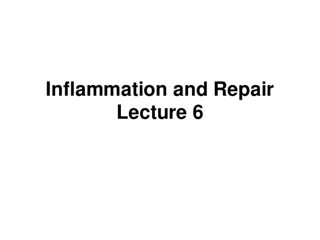 Inflammation and Repair Lecture 6