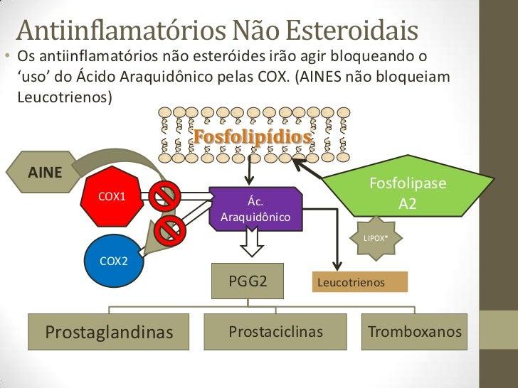 ciclo de esteroides