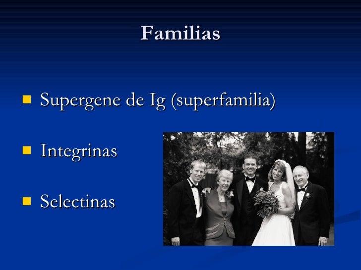 Familias <ul><li>Supergene de Ig (superfamilia) </li></ul><ul><li>Integrinas </li></ul><ul><li>Selectinas </li></ul>