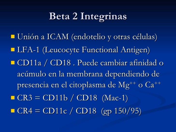 Beta 2 Integrinas <ul><li>Unión a ICAM (endotelio y otras células) </li></ul><ul><li>LFA-1 (Leucocyte Functional Antigen) ...