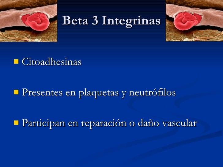 Beta 3 Integrinas <ul><li>Citoadhesinas </li></ul><ul><li>Presentes en plaquetas y neutrófilos </li></ul><ul><li>Participa...