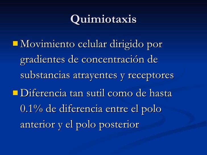 Quimiotaxis <ul><li>Movimiento celular dirigido por gradientes de concentración de substancias atrayentes y receptores </l...
