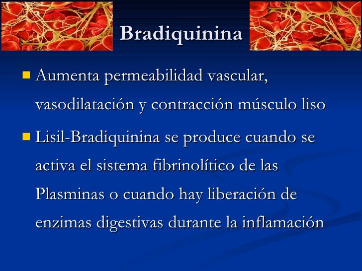 Bradiquinina <ul><li>Aumenta permeabilidad vascular, vasodilatación y contracción músculo liso  </li></ul><ul><li>Lisil-Br...