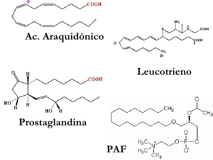 Leucotrieno Ac. Araquidónico PAF Prostaglandina