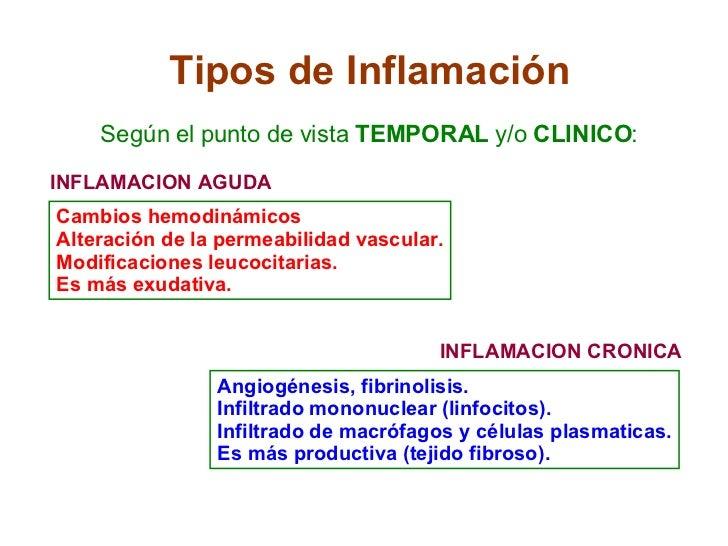 Tipos de Inflamación Según el punto de vista  TEMPORAL  y/o  CLINICO : INFLAMACION AGUDA INFLAMACION CRONICA Cambios hemod...