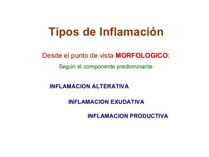 Tipos de Inflamación Desde el punto de vista  MORFOLOGICO : INFLAMACION ALTERATIVA INFLAMACION PRODUCTIVA Según el compone...