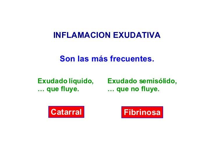 INFLAMACION EXUDATIVA Catarral Fibrinosa Son las más frecuentes. Exudado líquido, …  que fluye. Exudado semisólido, …  que...