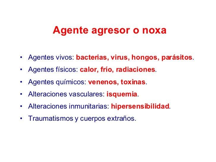 Agente agresor o noxa <ul><li>Agentes vivos:  bacterias, virus, hongos, parásitos . </li></ul><ul><li>Agentes físicos:  ca...