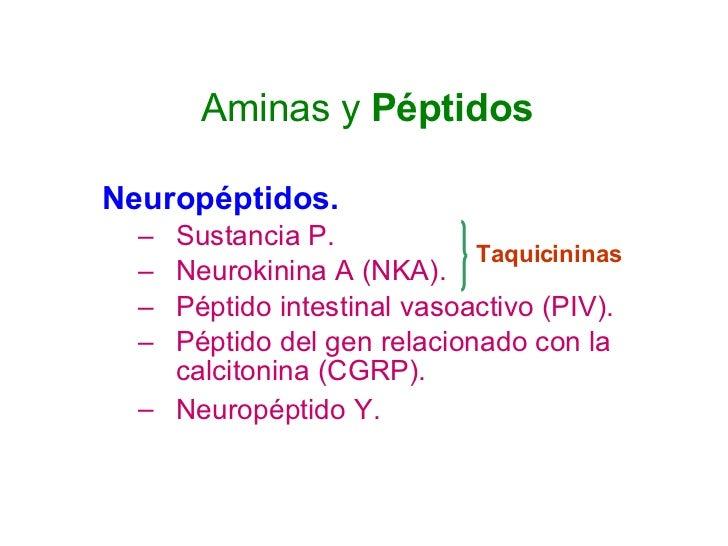 Aminas y  Péptidos <ul><li>Neuropéptidos. </li></ul><ul><ul><li>Sustancia P. </li></ul></ul><ul><ul><li>Neurokinina A (NKA...