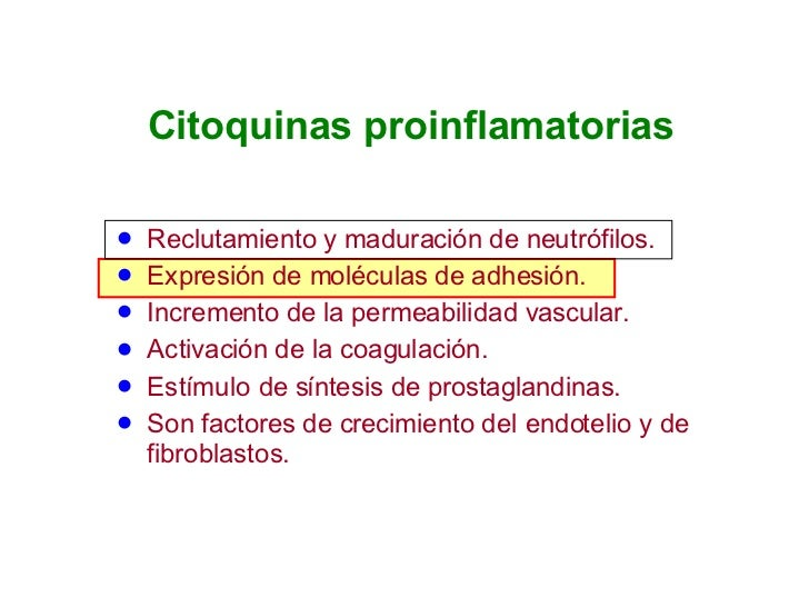 Citoquinas proinflamatorias <ul><li>Reclutamiento y maduración de neutrófilos. </li></ul><ul><li>Expresión de moléculas de...
