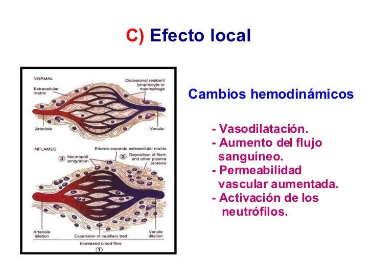 Cambios hemodinámicos  - Vasodilatación. - Aumento del flujo sanguíneo. - Permeabilidad vascular aumentada. - Activación d...