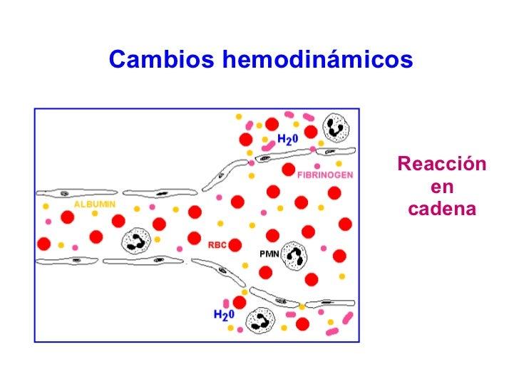 Cambios hemodinámicos  Reacción en cadena