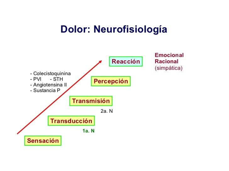 Dolor: Neurofisiología  Sensación Transducción Transmisión Percepción Reacción <ul><li>- Colecistoquinina </li></ul><ul><l...