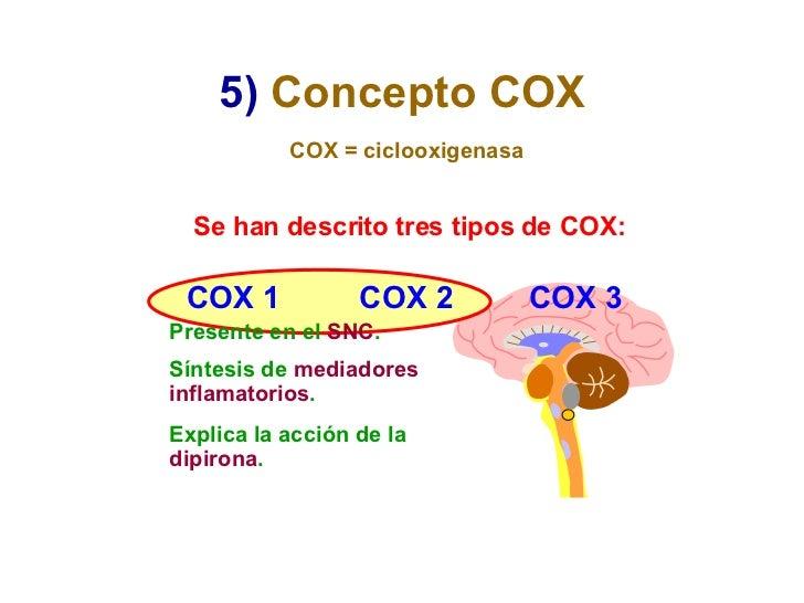 5)   Concepto COX Se han descrito tres tipos de COX: COX = ciclooxigenasa COX 1 COX 2 COX 3 Presente en el  SNC . Síntesis...