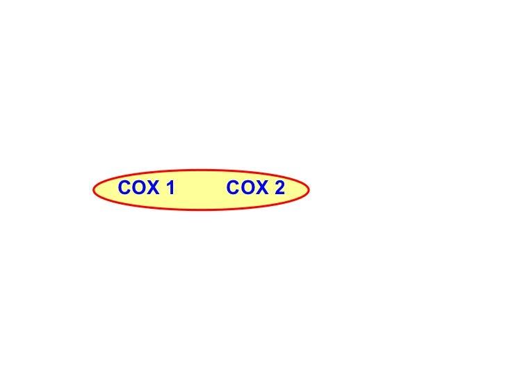 COX 1 COX 2