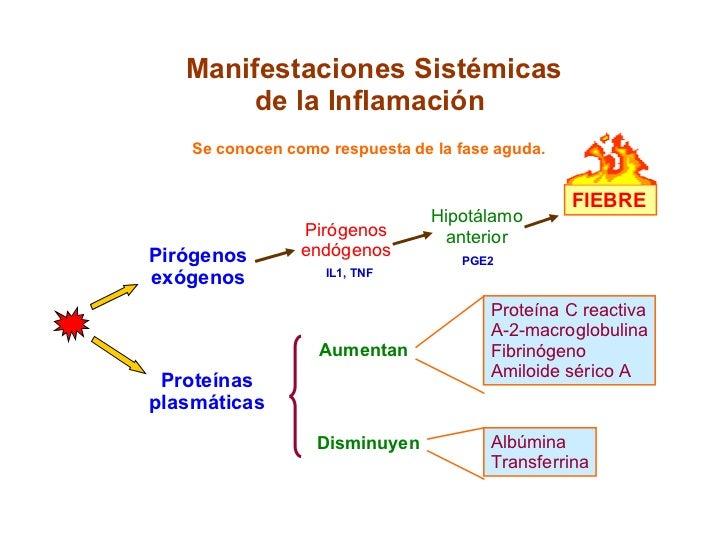 Manifestaciones Sistémicas de la Inflamación Se conocen como respuesta de la fase aguda. Proteínas plasmáticas Aumentan Di...
