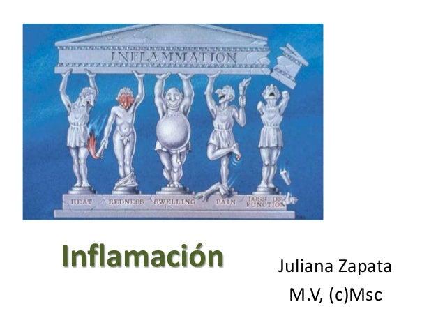 Inflamación Juliana Zapata M.V, (c)Msc