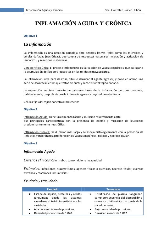 1 Inflamación Aguda y Crónica Noel González, Javier DubónINFLAMACIÓN AGUDA Y CRÓNICAObjetivo 1La InflamaciónLa inflamación...
