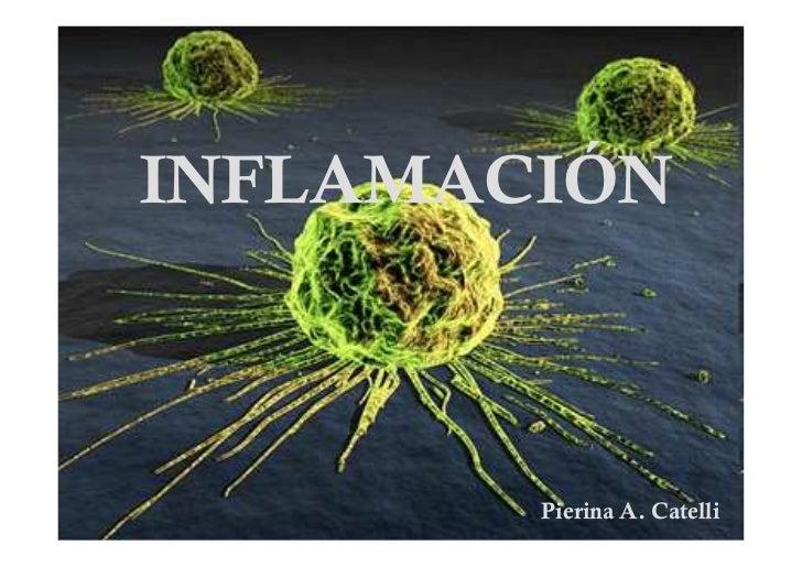 INFLAMACIÓN        Pierina A. Catelli
