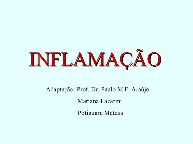 INFLAMAÇÃOINFLAMAÇÃO Adaptação: Prof. Dr. Paulo M.F. Araújo Mariana Lazarini Potiguara Mateus