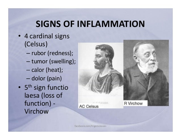 five cardinal signs of infection The five cardinal signs of inflammation are erythema, edema, heat, pain, and altered function these largely result from innate responses that draw increased blood flow to the injured or infected tissue.