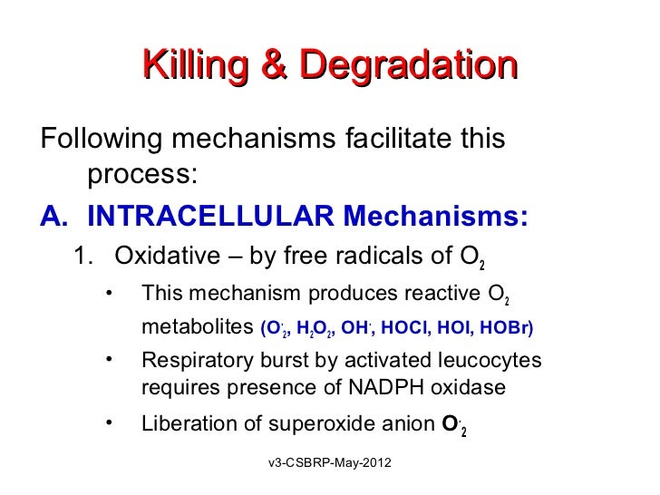 Killing & DegradationFollowing mechanisms facilitate this    process:A. INTRACELLULAR Mechanisms:  1. Oxidative – by free ...