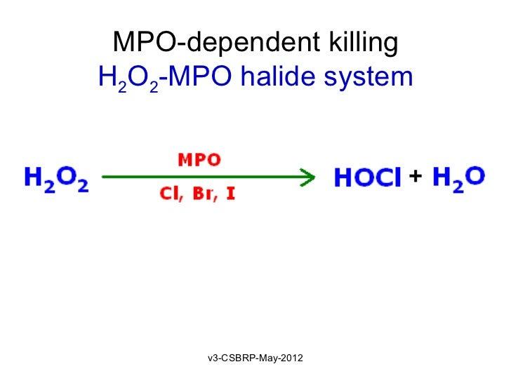 MPO-dependent killingH2O2-MPO halide system       v3-CSBRP-May-2012