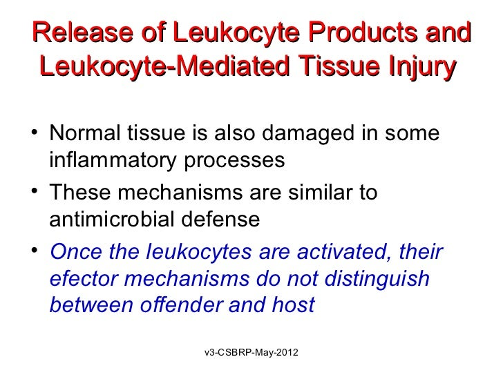 Release of Leukocyte Products andLeukocyte-Mediated Tissue Injury• Normal tissue is also damaged in some  inflammatory pro...