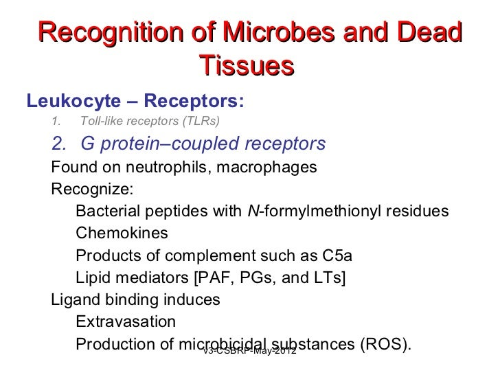 Recognition of Microbes and Dead             TissuesLeukocyte – Receptors:  1.   Toll-like receptors (TLRs)  2. G protein–...