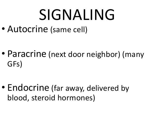 ExtraCellular Matrix (ECM) • Collagen(s) I-XVIII • Elastin • Fibrillin • CAMs (Cell Adhesion Molecules) – Immunoglobulins,...