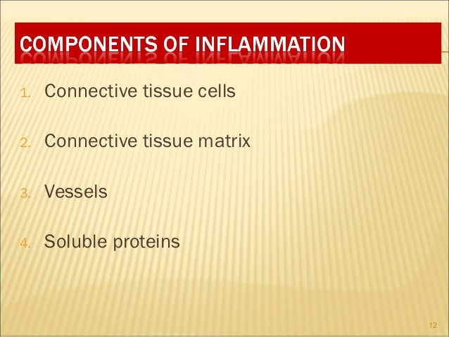 1.   Connective tissue cells2.   Connective tissue matrix3.   Vessels4.   Soluble proteins                                12