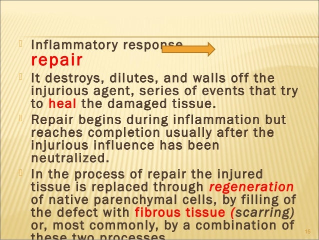    Inflammator y response    repair   It destroys, dilutes, and walls of f the    injurious agent, series of events that...