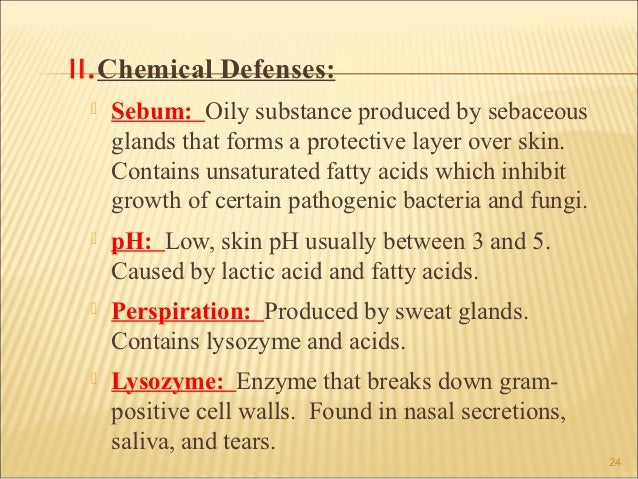 II.Chemical Defenses:    Sebum: Oily substance produced by sebaceous     glands that forms a protective layer over skin. ...