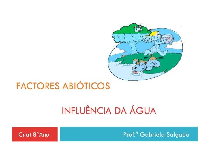 FACTORES ABIÓTICOS             INFLUÊNCIA DA ÁGUACnat 8ºAno              Prof.ª Gabriela Salgado