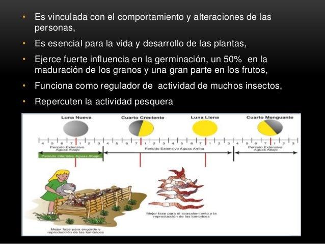 • Es vinculada con el comportamiento y alteraciones de las personas, • Es esencial para la vida y desarrollo de las planta...