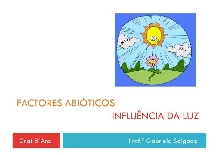 FACTORES ABIÓTICOS                 INFLUÊNCIA DA LUZCnat 8ºAno          Prof.ª Gabriela Salgado